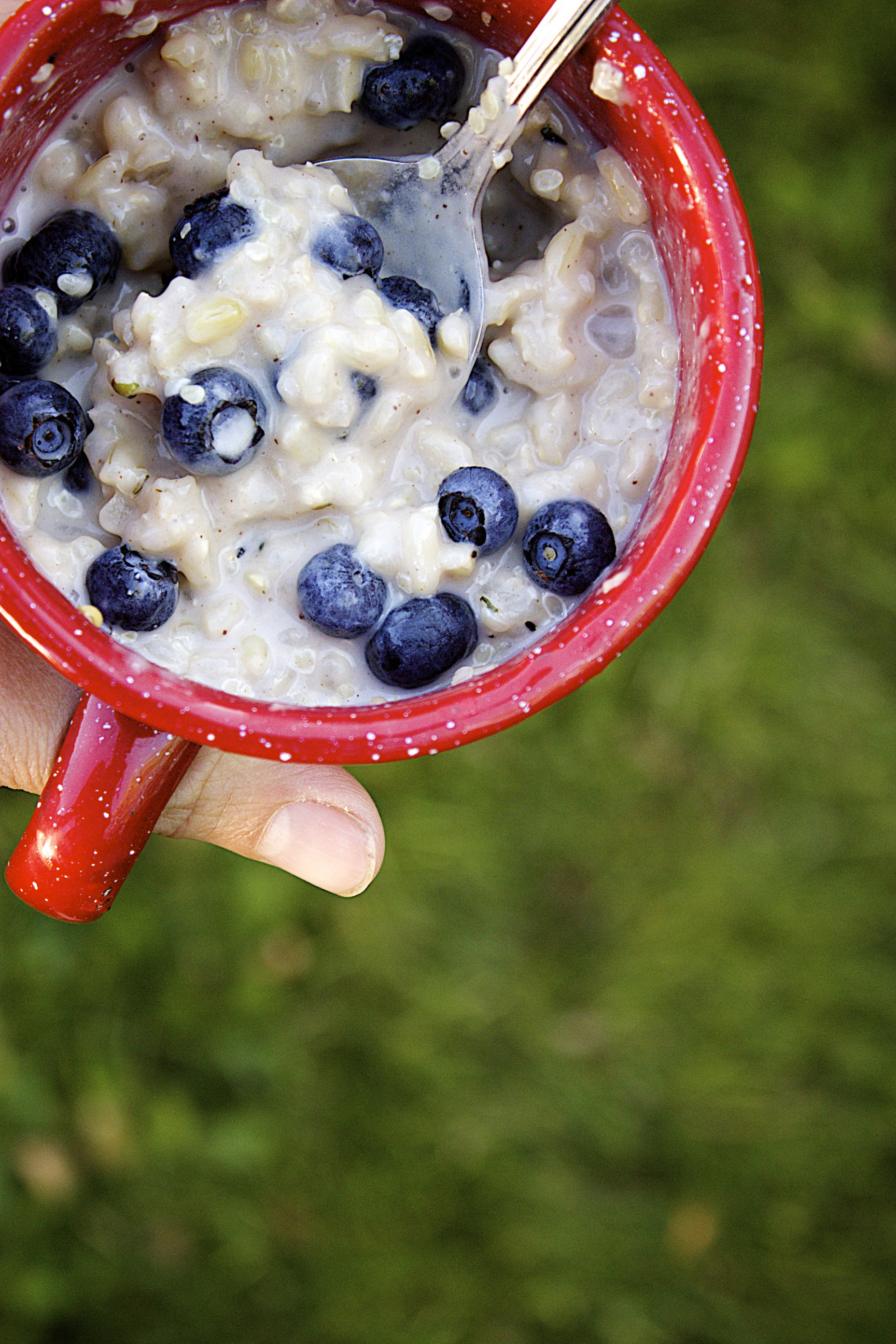 make-ahead breakfast rice pudding